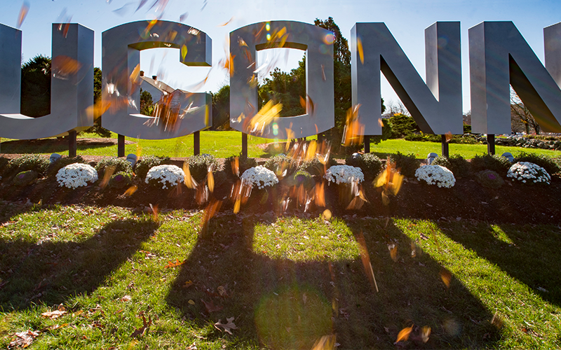UCONN sign with fall leaves